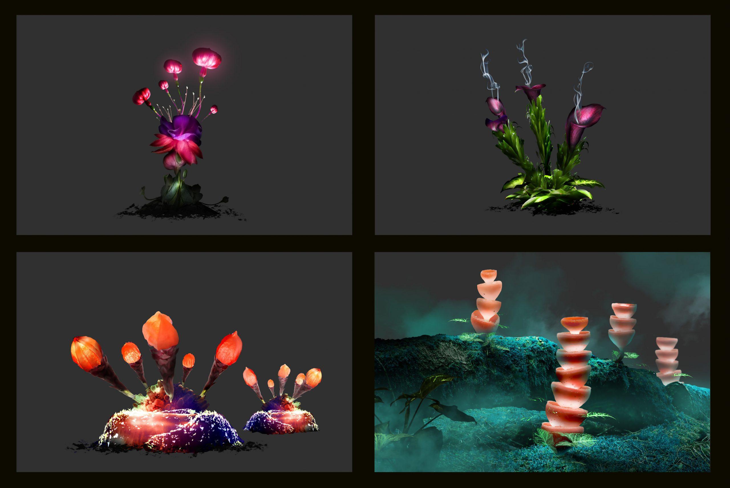 flora_design_v100